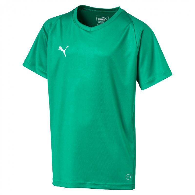 Maillot Puma Liga Core vert
