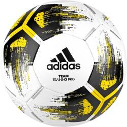 Ballon de football Adidas Team Training Pro