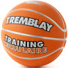 Ballon Training cellulaire, taille 6