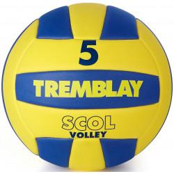 Ballon Scol'Volley