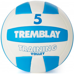Ballon Training Volley