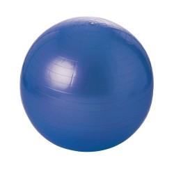 Balle gymnique 55 cm