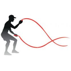Schéma de l'utilisation des cordes ondulatoires 4.5 kg